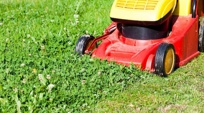 make-money-from-home-cutting-grass