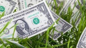 make-money-mowing-lawns
